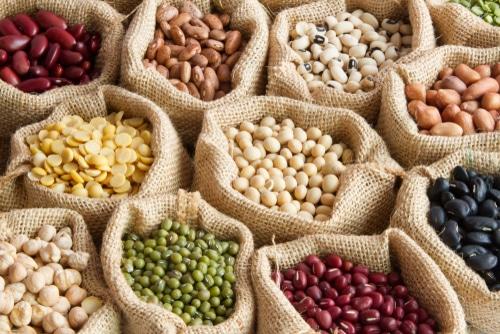 ¿Por qué deberías incluir legumbres en tu dieta?